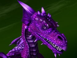 3D and Digital art Wallpaper - Midnite dragon