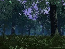 3D and Digital art Wallpaper - Oak grove