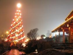 Christmas Wallpaper - Craciun Iarna