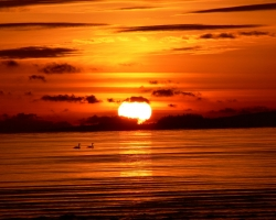 Nature Wallpaper - Comox sunrise
