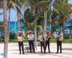 Music Wallpaper - Mexico band