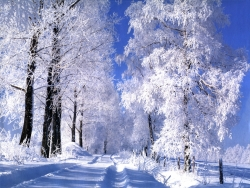 Christmas Wallpaper - Roads snow