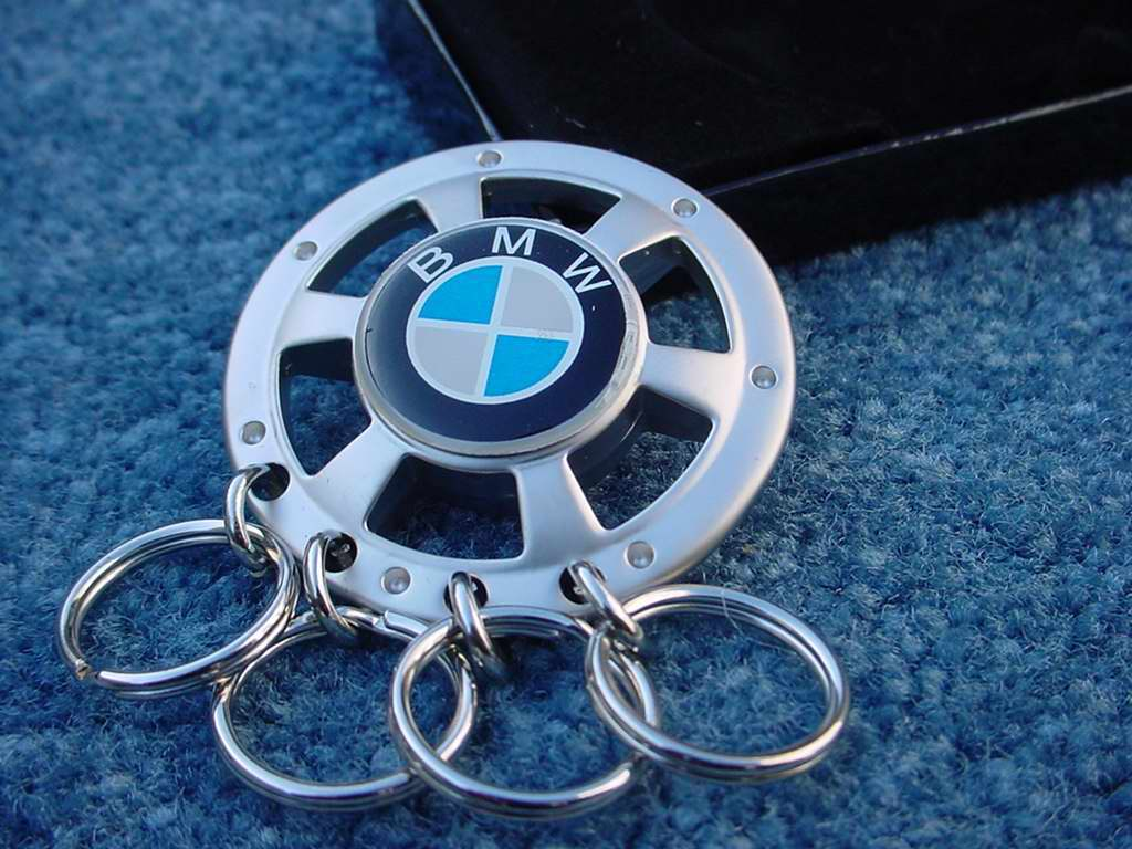 BMW logo keys