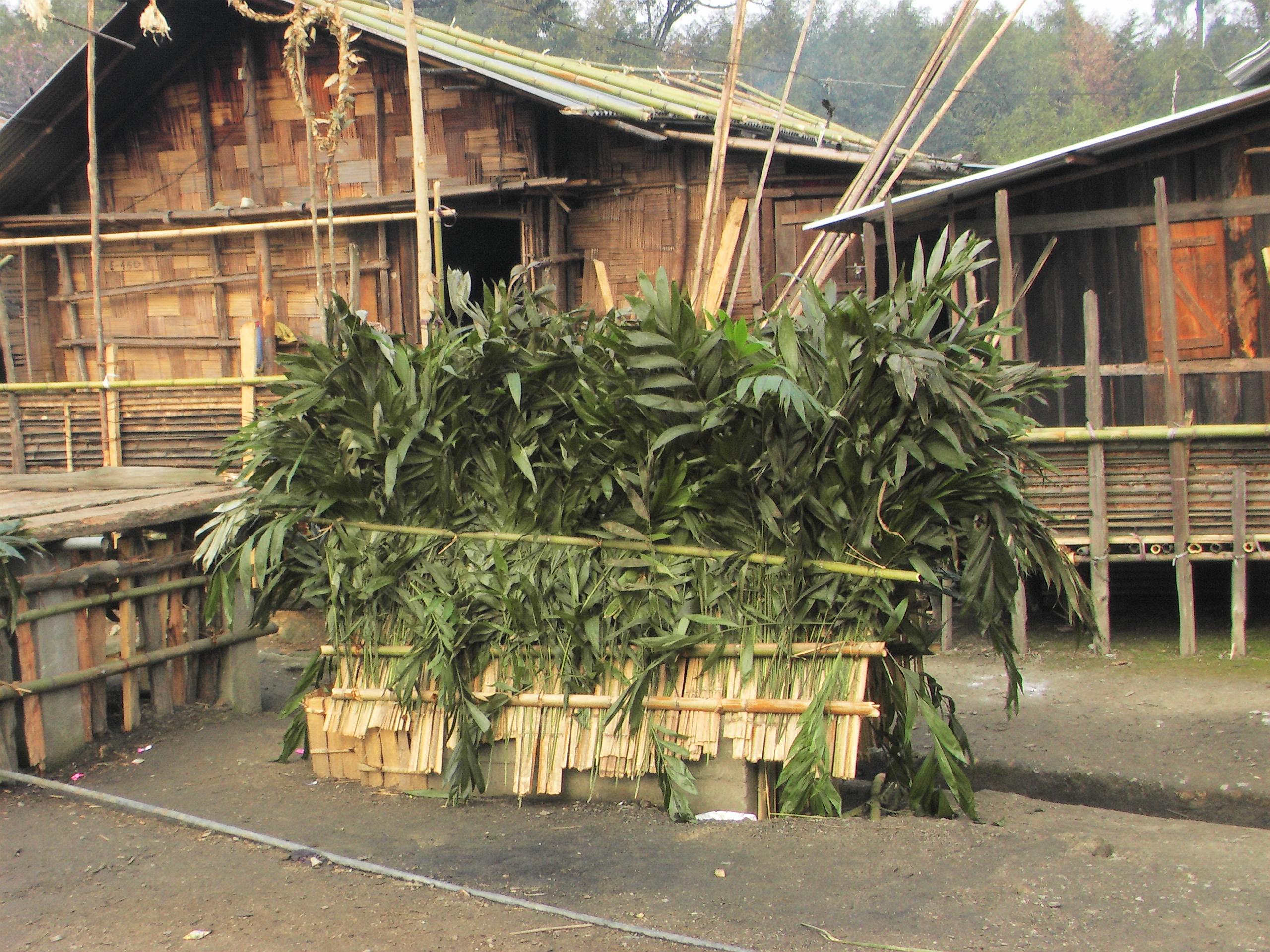 Apatani tribe culture18