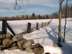 Landscape Wallpaper - Snow fence