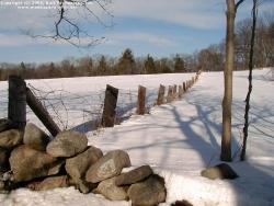 Landscape Wallpaper - Snow fence