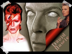 Celebrity Wallpaper - D. Bowie