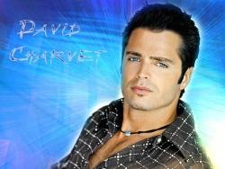 Celebrity Wallpaper - David Charvet