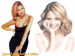 Celebrity Wallpaper - Shara Michelle Gellar