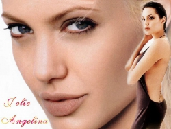 Celebrity Wallpaper - Jolie Angelina