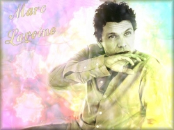 Celebrity Wallpaper - Marc Lavoine