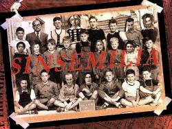 Funny Wallpaper - Sinsemilia