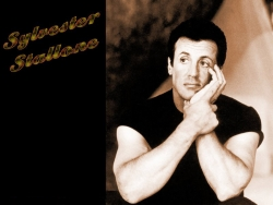Celebrity Wallpaper - Sylvester Stallone