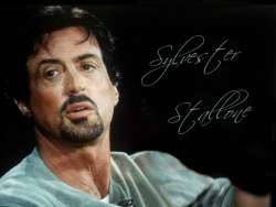 Celebrity Wallpaper - S. Stallone