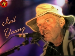 Celebrity Wallpaper - Neil Young