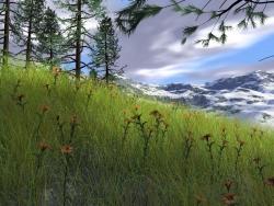 Landscape Wallpaper - Easter stepa