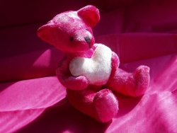 Valentine/Love Wallpaper - Pink Teddy
