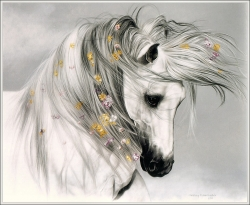 Animal Wallpaper - Romantic horse