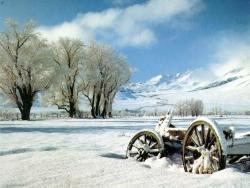 Landscape Wallpaper - Peisaj de Iarna