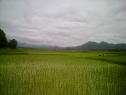 Nature Wallpaper - Arunachal Pradesh1
