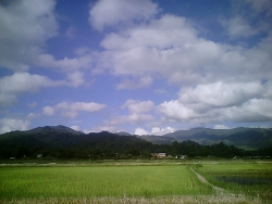 Landscape Wallpaper - ZIRO